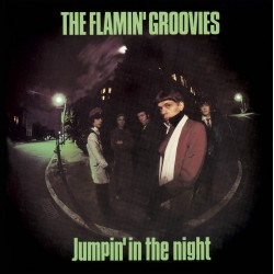 The Flamin' Groovies: Jumpin' In The Night