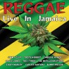 Reggae Live In Jamaica